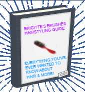 Brigitte's Brushes Hairstyling Guide