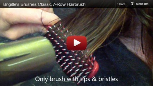 Brigitte's Brush Video